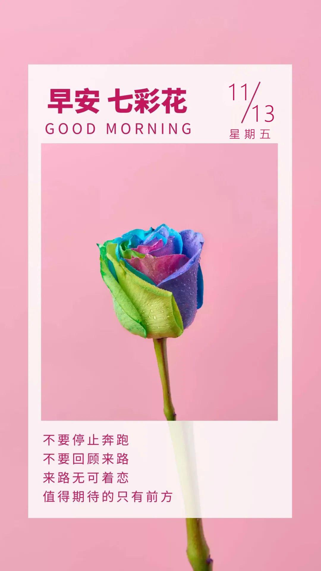 发朋友圈的奋斗激励早安文案带图:努力,但凡辛苦都是礼物!