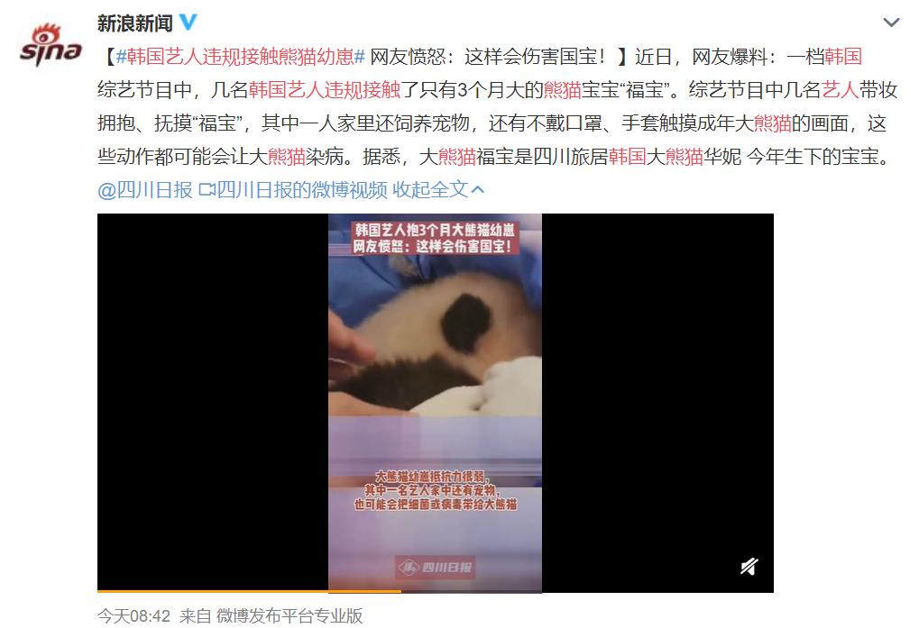 韩国女团浓妆抱熊猫幼崽,结果被挂热搜骂了一天…