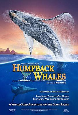 座头鲸 电影海报