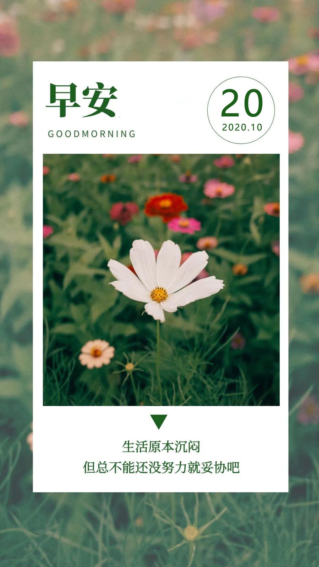 早上好图片日签正能量励志带文字,精辟激励早安语录