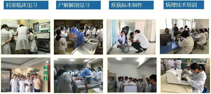 桂林医学院临床医学院(附属医院)病理学被认定为首批国家级一流本科课程