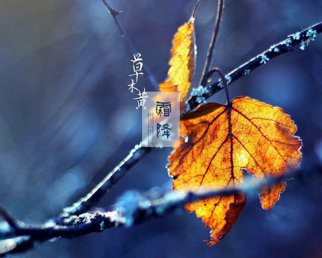 霜降最新祝福语简短带图片